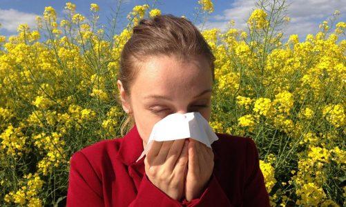 Alergia jest dość powszechną dolegliwością