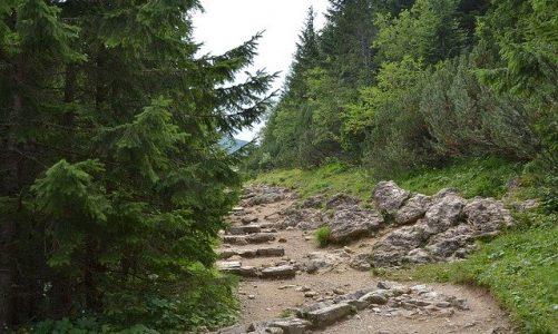 Które firmy w tatrach dysponują doskonałą baza noclegową?